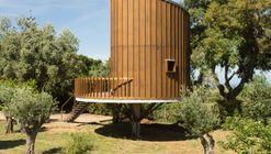 Tree House / RA+TR arquitectos