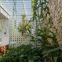 24 Times House - Time House nhà diện tích 8,4x56m Không gian xanh là vùng đệm nhằm ngăn tiếng ồn và khói bụi.
