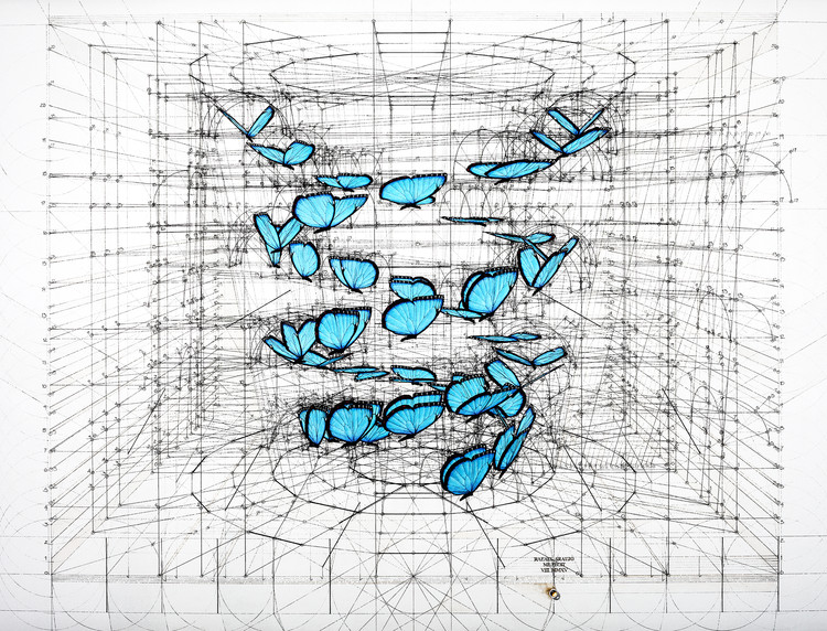 """Rafael Araujo sobre geometría en la naturaleza: """"Cada dibujo es un algoritmo estricto"""", © Rafael Araujo"""