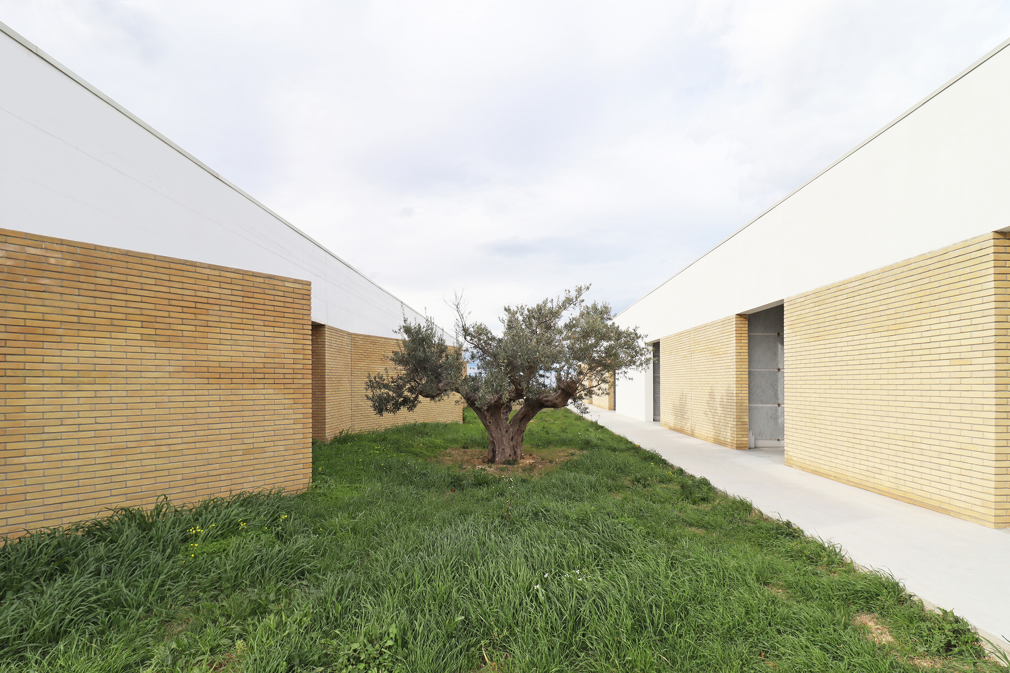 Landscape of Remembrance / arcari cimini architettura
