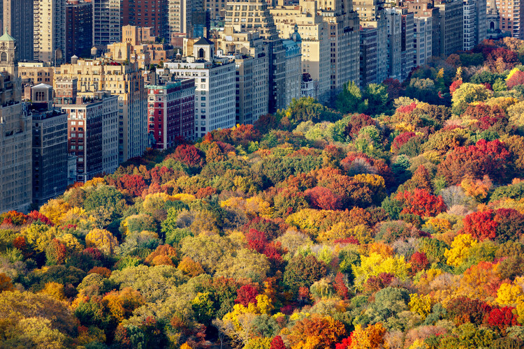 Living On the Edge: Why We're Attracted to Places Where the Manmade Abuts the Natural, Upper West Side, Manhattan, Nueva York. Image © Francois Roux | Shutterstock