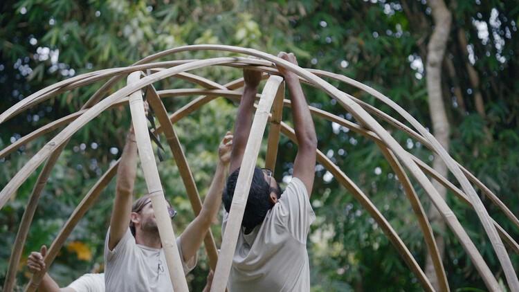 Cómo se dobla el bambú para crear estructuras curvas, Cortesía de BambooU