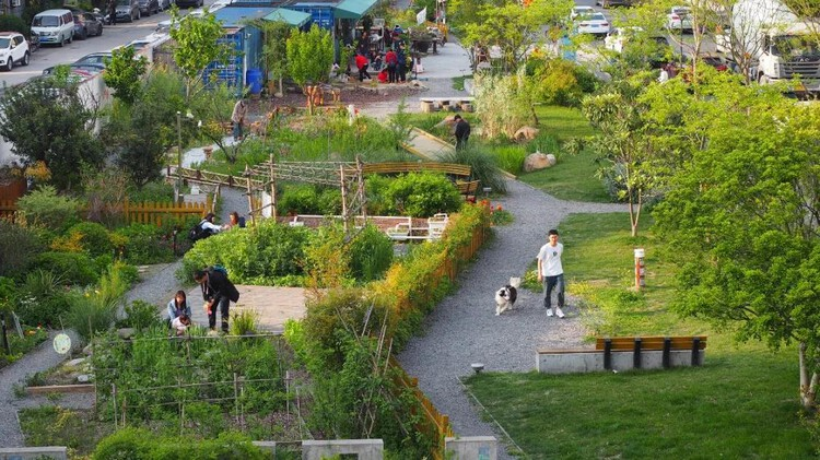Community-Building Award: The Community Garden Series in Shanghai. Image via City for Humanity Award