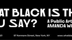 What Black Is This, You Say? A Public Artwork by Amanda Williams
