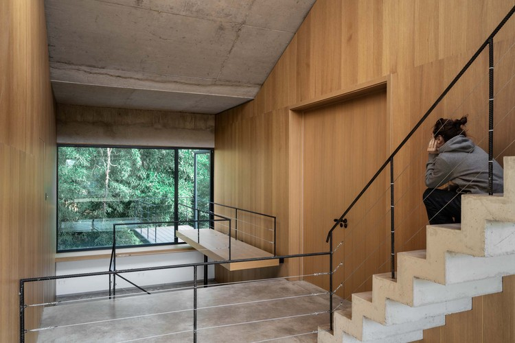 or you can watch the forest tips on the second floor. Image © Yumeng Zhu