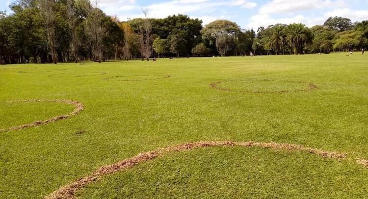 Parque Ibirapuera delimita áreas para garantir distanciamento social, Parque Ibirapuera. Imagem: Divulgação