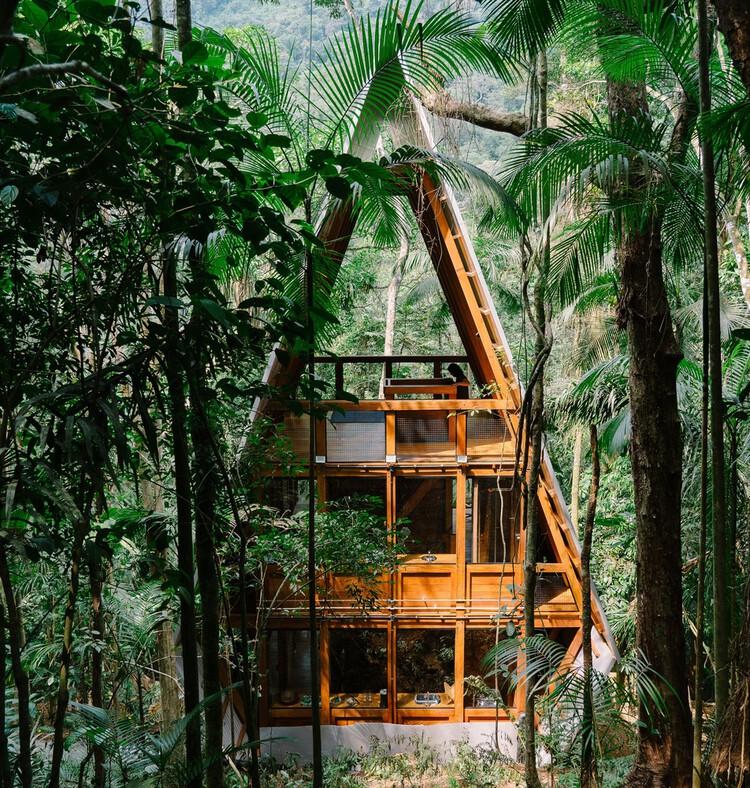 Casas brasileiras e sua relação com a natureza, Casa Macaco / Atelier Marko Brajovic. Image © Rafael Medeiros