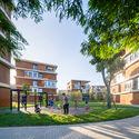 campus garden. Image © Qingshan Wu