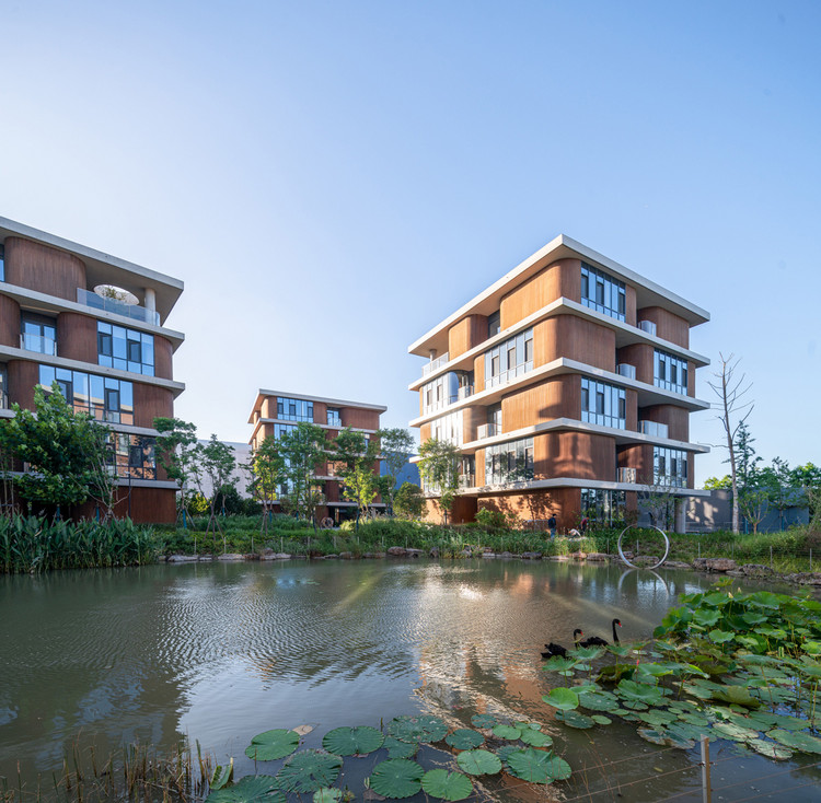 campus wetland. Image © Qingshan Wu