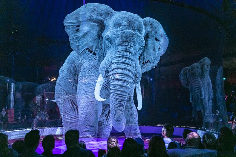 Roncalli Circus / Optoma. Image © Circus Roncalli on Flickr