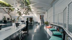 Ficus Office / Arquid