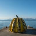 黄色いカボチャ/草間陽代。 画像©三上晴夫