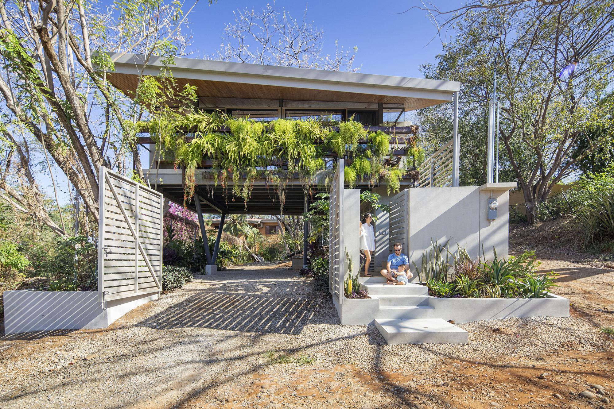 Garden House / LSD Architects