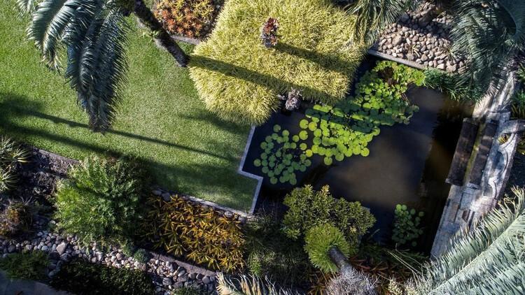 Sítio Roberto Burle Marx recebe título de Patrimônio Mundial da Unesco, Cortesia de Iphan
