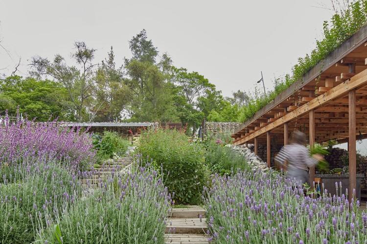 Jardín comunitario el terreno / Vertebral, © Ricardo de la Concha