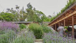 El Terreno Communal Garden / Vertebral