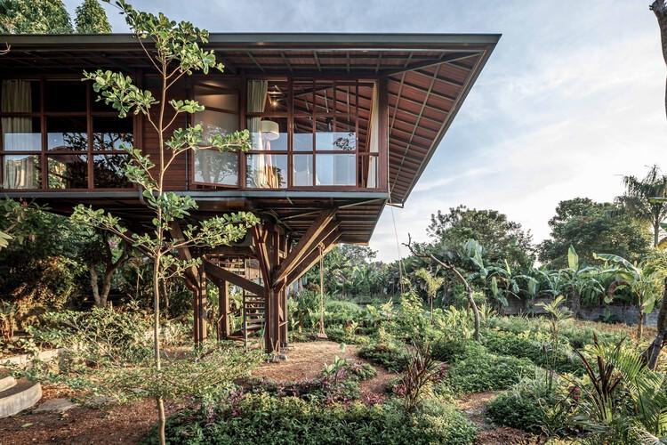 Casa del árbol C / Stilt Studios, © Arley Mardo