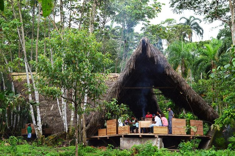 Центр интерпретации какао / Taller Con Lo Que Hay 4 + ENSUSITIO Arquitectura.  Фото: © Taller Con Lo Que Hay / ENSUSITIO Arquitectura