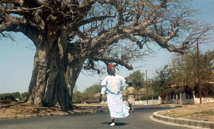 Ибрагим идет по широкополосным улицам наиболее богатых районов Дакара.  Изображение предоставлено Janus Films