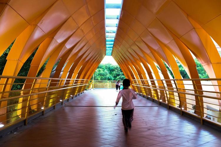 Children crossing the bridge.  Image © Yilei Zhu