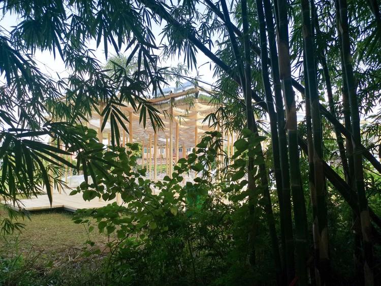 юго-восточная бамбуковая роща.  Изображение предоставлено Aether Architects