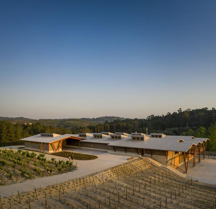 Taboadella Winery / Carlos Castanheira, © Fernando Guerra | FG+SG