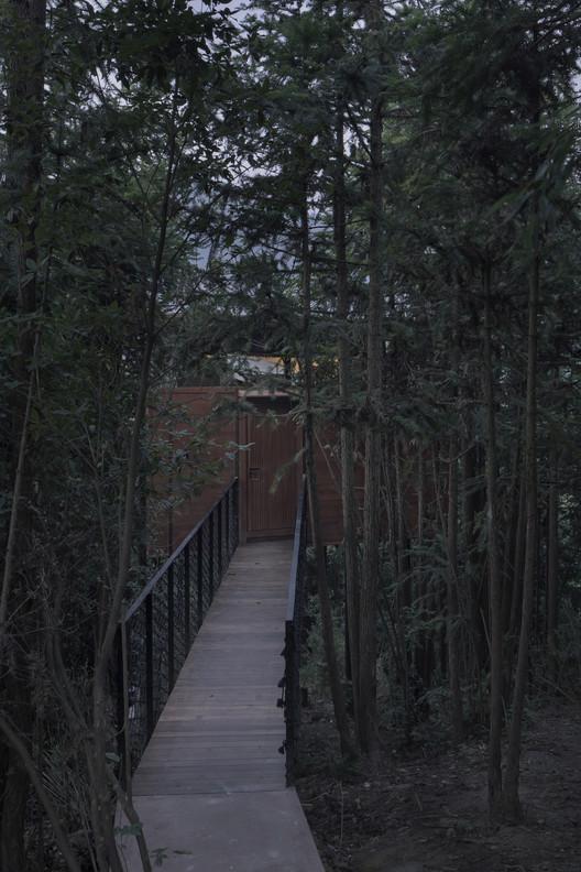 мост, соединяющий здание и лес.  Изображение © Боуэн Хоу