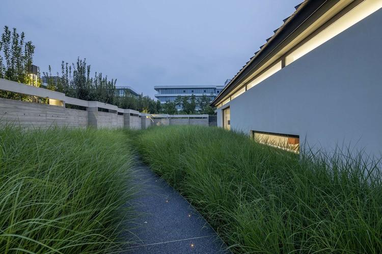 лисохвостый сад.  Изображение © Weiqi Jin
