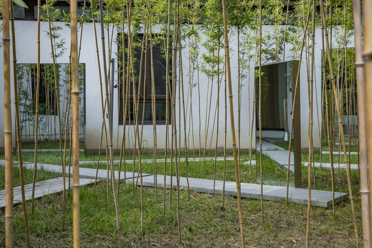 бамбуковое зеркало.  Изображение © Weiqi Jin